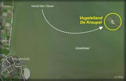 Vogel eiland De Kreupel in IJsselmeer